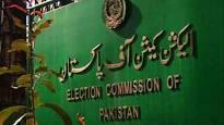 ECP hears plea against Maryam Nawaz's appointment as PML-N's vice president