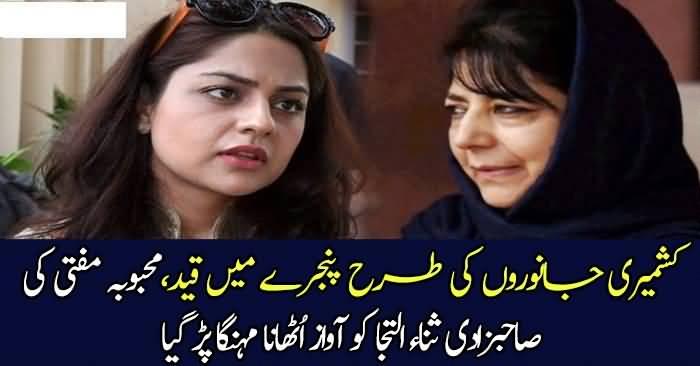 Kashmir Mein Janwaron Ki Tarah Qaid