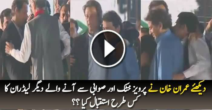 See How Imran Khan and Other PTI Leaders Welcomed CM KPK Pervez Khattak?