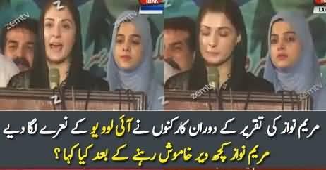 What Maryam Nawaz Replied On I Love You Slogans?